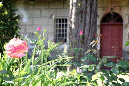 Casa Buffa - Accommodation - Cumiana