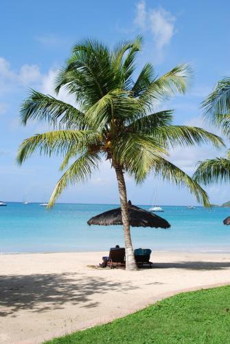 Paynes Bay, St James, Barbados, Caribbean.