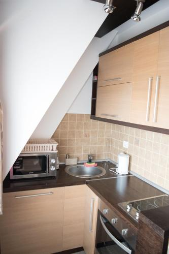 Apartment 306 - Kopaonik