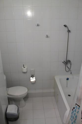 Гостиница Булгар Двухместный номер «Комфорт» с 1 кроватью или 2 отдельными кроватями