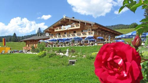 Winklmoos Sonnenalm - Hotel - Reit im Winkl