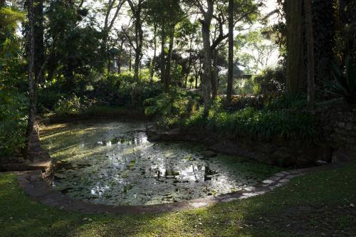 Thotalagala Plantation House, Dambatenne Road, Thotalagala,, Haputale, Sri Lanka.