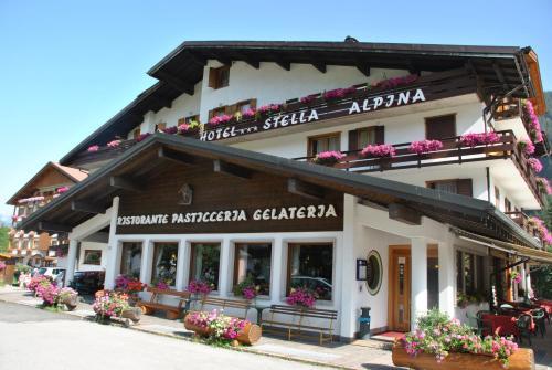 Hotel Stella Alpina Falcade