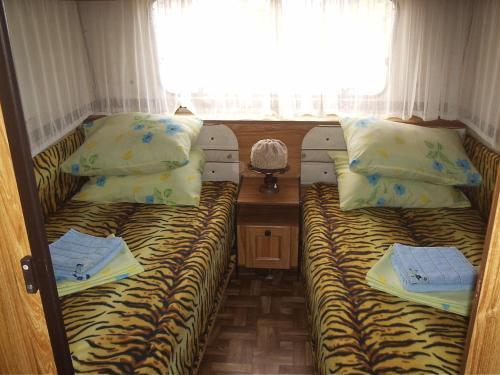 Auto Camping On Berdyanskaya Kosa