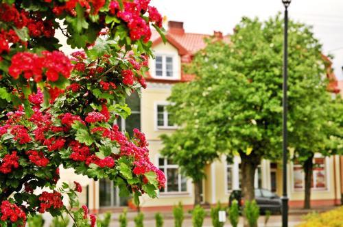 Dom Gościnny Wrzos главное фото
