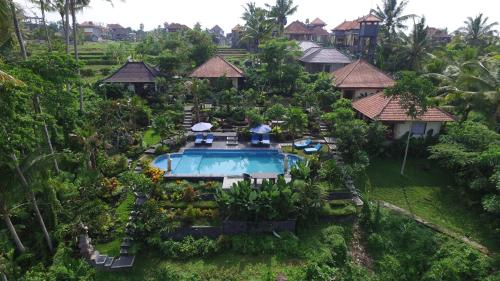 Photos Of - Villa Capung Mas Ubud