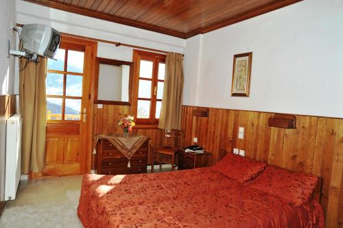 Hotel Anax - Metsovo