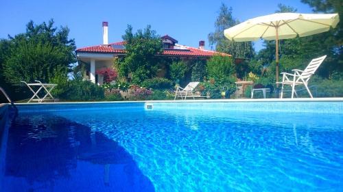 Ciliegissima - Accommodation - Pecetto
