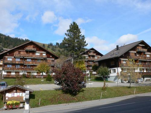 Apartment Suzanne Nr. 21 - Gstaad