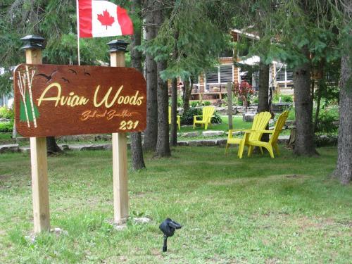 Avian Woods Foto principal