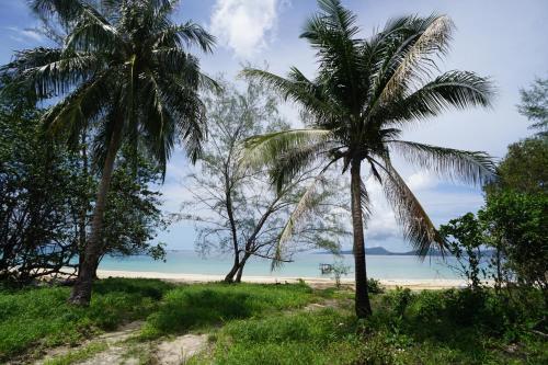 Suns of Beaches