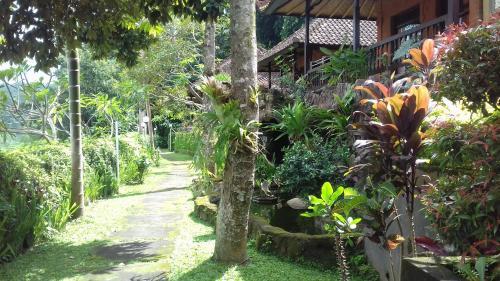 Kusuma Jaya On The Hill, Karangasem