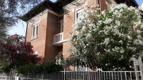 . Appartamento in Villa