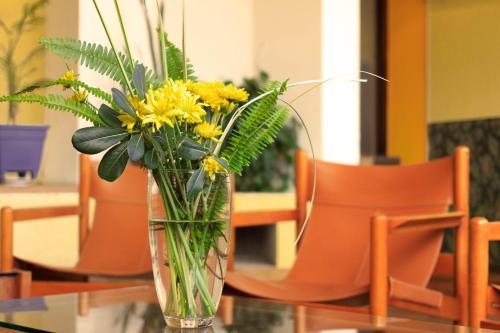 Фото отеля Hotel El Velero