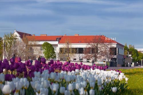 __{offers.Best_flights}__ Strandhotel Alte Donau