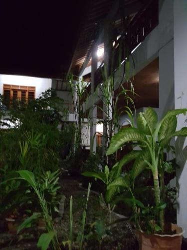 Anda Boutique Hotel