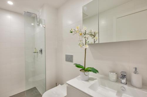 Balmain Rozelle Luxury 2 Bed Self Contained Apartment (105LIL) - image 10
