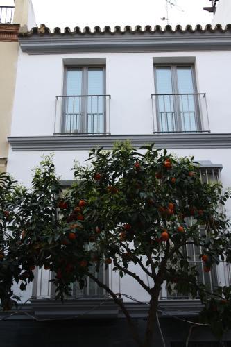 . Ritual Sevilla Suites - Malaver 23