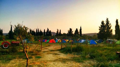 Siğacık Teos Sanat Kampı rezervasyon