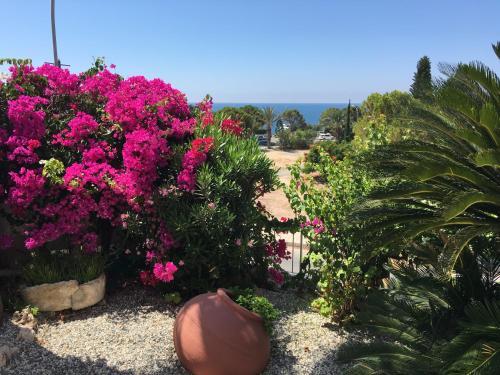 . Villa Neyla Four bedroom Beach front Coral Bay
