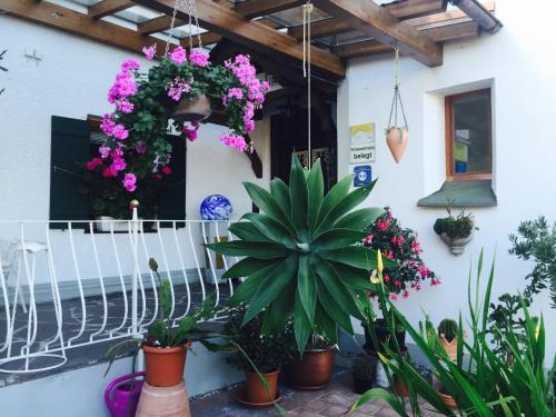Haus bei der Linden Ferienwohnungen photo 126