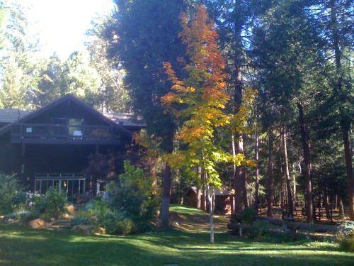 Harmony Ridge Lodge - Nevada City, CA 95959