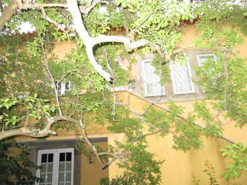 Quinta Do Prado