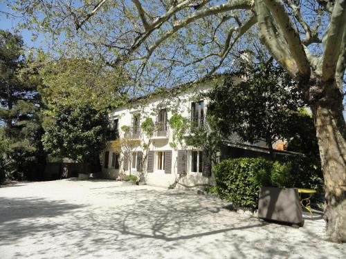 Hotel de l'île - Hôtel - Avignon