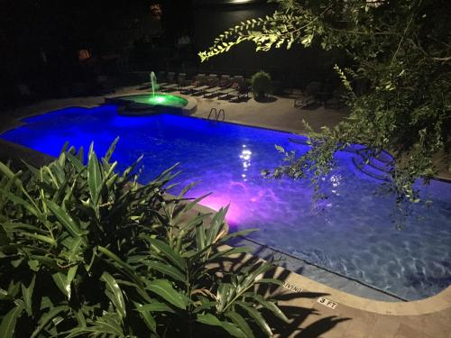 Resort Style Apt/Home In Houston Medical Centre