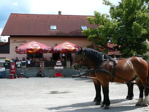 Rodinny Penzion s Restauraci - Hospudka na Navsi (B&B)