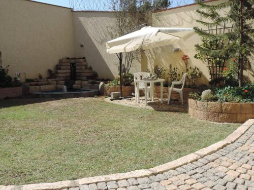 Asimba Guest House, Debubawi