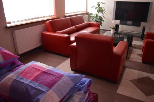 Złoty Dąb - Hostel Pokoje Foto principal