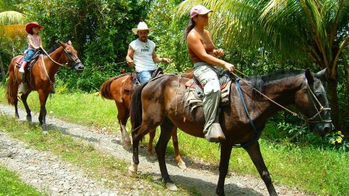 Puntarenas, 60702 Carate, Costa Rica.