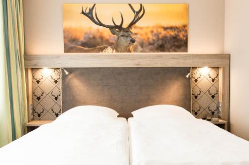 . Hotel Bavaria Superior