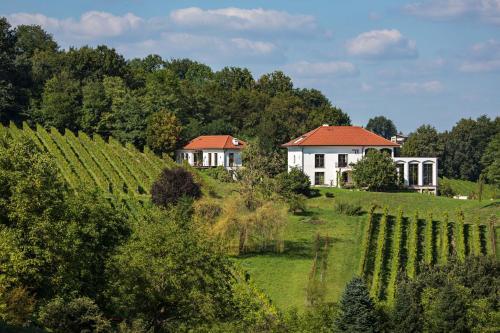 . Weingut Hirschmugl - Domaene am Seggauberg