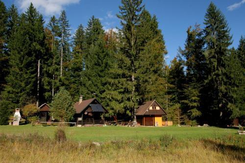 Fikfak cottage - Accommodation - Bled