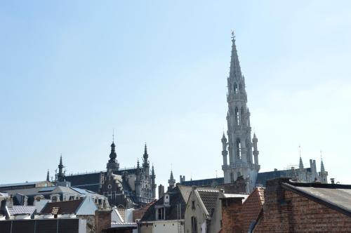 Hotel-overnachting met je hond in Flat Sympa next Grand Place - Brussel