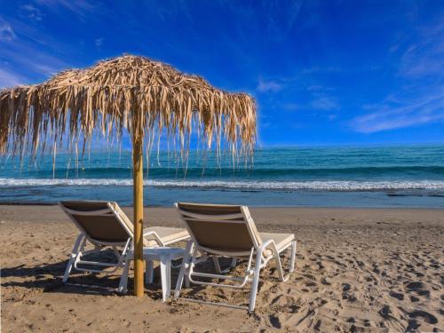 . Alexia Beach Hotel