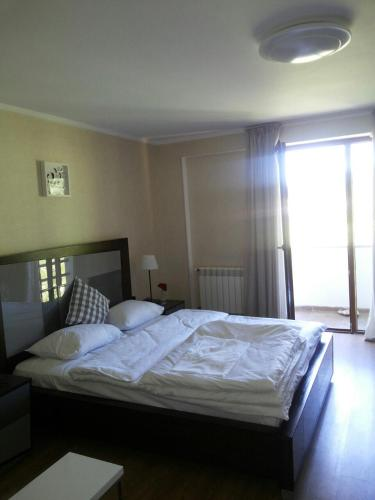 Bakuriani Hotels