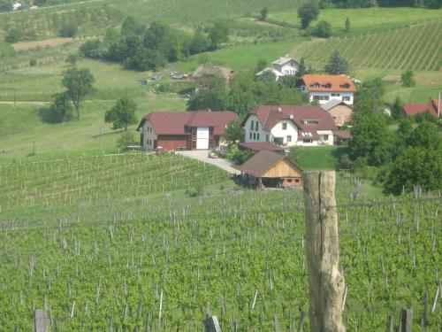 Tourist Farm Joannes - Mariborsko Pohorje