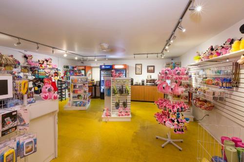 Flamingo Express Hotel - Kissimmee, FL 34744
