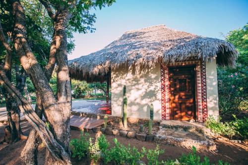 Foto - Punta Teonoste