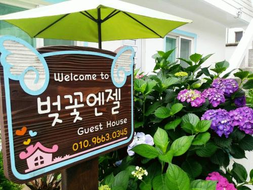 Cherry Blossom Guesthouse