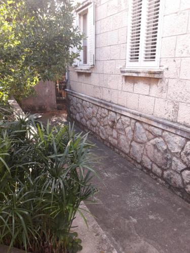 Photo - Apartment Pavlito
