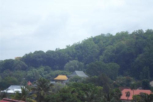 Фото отеля King Of Kandy