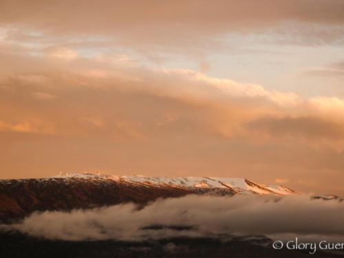 Arnott's Lodge & Hiking Adventures - Hilo, HI 96720