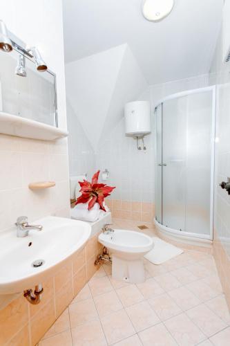 Apartments Prekmurska Vas   Vital Resort