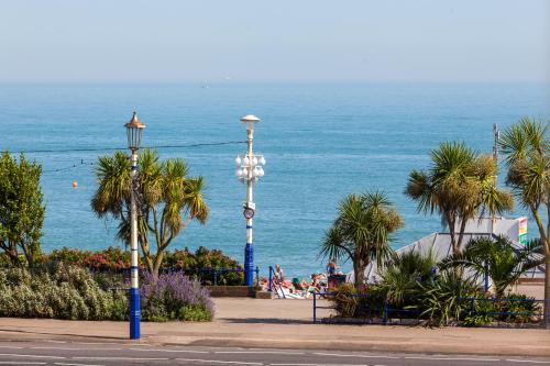 So Eastbourne picture 1 of 42