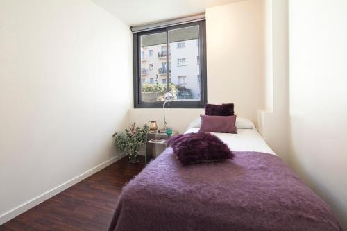 Apartment Barcelona Rentals - Private Pool and Garden Center photo 5