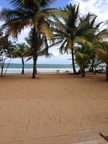 . Beach Front Apartment Rio Mar Puerto Rico
